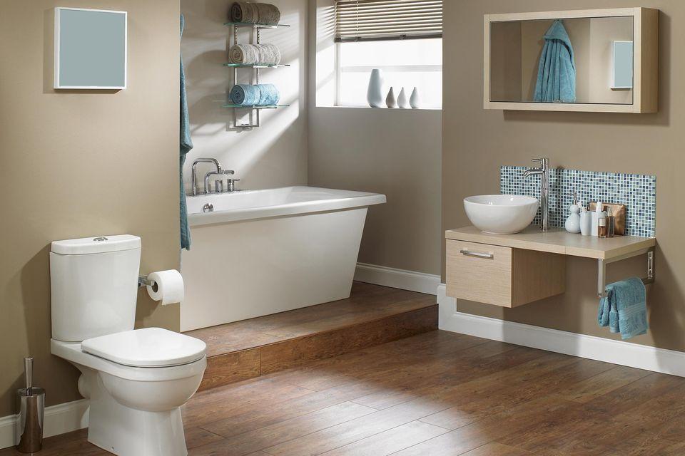 toilet renovations